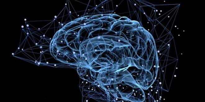IBM Watson: la inteligencia artificial que hace perfil de personalidad