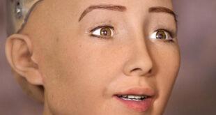 Conoce a 4 robots con inteligencia artificial