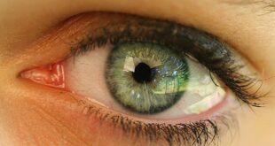 Desarrollan ojo biónico para dar la vista a los ciegos