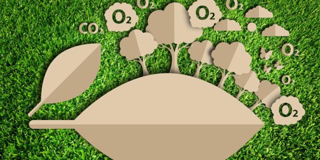 Desarrolladores crean software de código abierto para ayudar a los investigadores de IA a reducir la huella de carbono