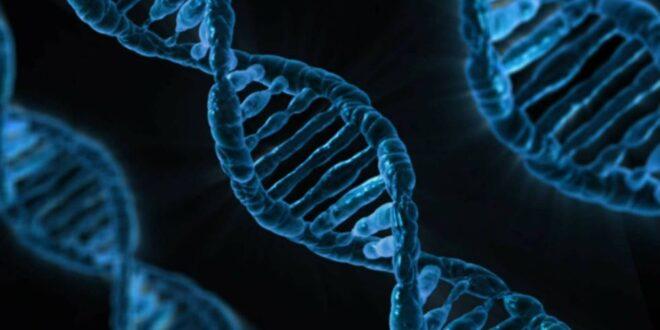 Presentan la plataforma impulsada por inteligencia artificial para edición del genoma