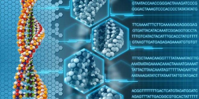 Aprendizaje automático genera genomas realistas para humanos imaginarios