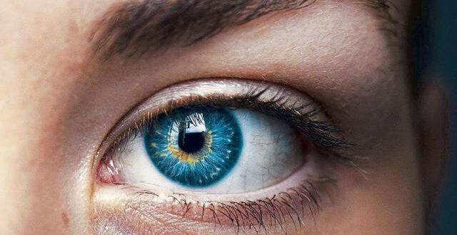 Aprendizaje profundo ayuda a reducir la retinopatía diabética