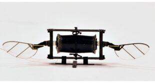 Dron del MIT imita a los insectos para sortear colisiones