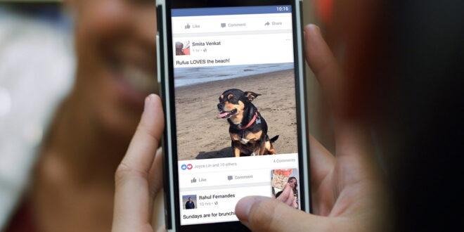 Facebook presenta un proyecto de inteligencia artificial que aprende de videos