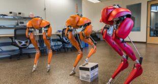 Cassie: robot que se enseñó a sí mismo a caminar