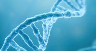 Usando IA para detectar cómo los humanos se han adaptado a enfermedades recientes